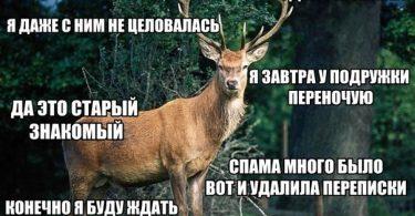 мужчина олень